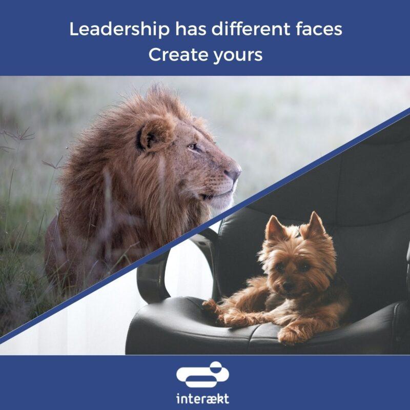 creat your leadership